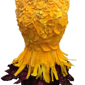 Squash and cabbage dress