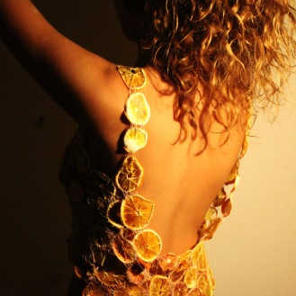 Biodegradable Fashion